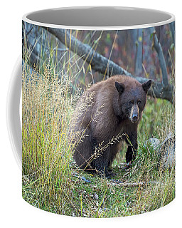 Surprised Bear Coffee Mug by Scott Warner