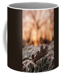 Surprises In Nature Coffee Mug