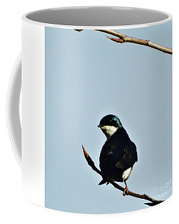 Swallow 2 Coffee Mug