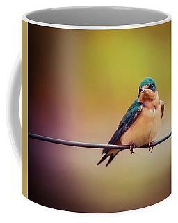 Coffee Mug featuring the photograph Swallow by Mary Hone