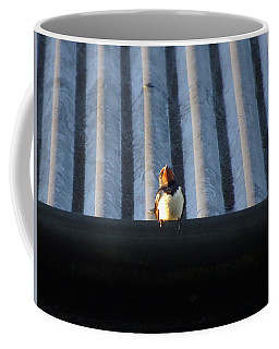 Swallow On The Roof Coffee Mug
