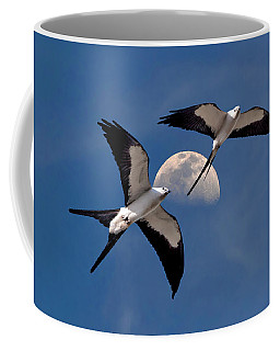 Coffee Mug featuring the photograph Swallow Tail Kites In Flight Under Moon by Justin Kelefas