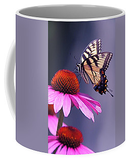 Coffee Mug featuring the photograph Swallowtail And Coneflower by Byron Varvarigos