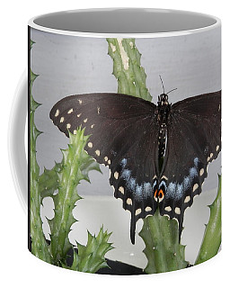 Swallowtail Butterfly Beauty Coffee Mug