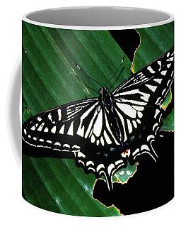Swallowtail Butterfly- Close Coffee Mug