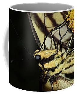 Swallowtail Butterfly Coffee Mug