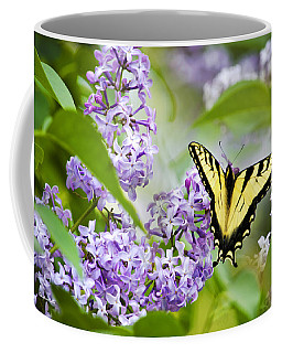 Swallowtail Butterfly On Lilacs Coffee Mug