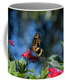 Swallowtail Butterfly Sits On Red Flower Against Blue Sky Coffee Mug