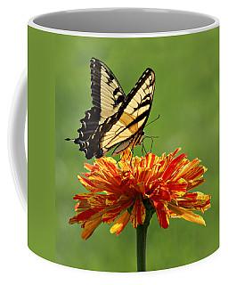 Swallowtail Butterfly - Zinnia Coffee Mug
