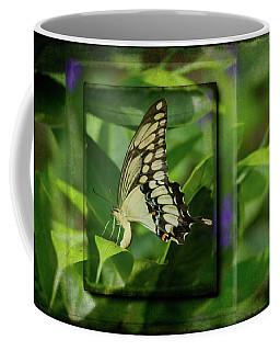 Swallowtail In Aged Pastel Frames Coffee Mug