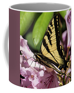 Swallowtail Butterfly Coffee Mug by Marilyn Wilson