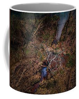 Swamp Tree Coffee Mug