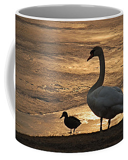 Coffee Mug featuring the photograph Swan And Baby At Sunset by Richard Bryce and Family