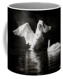 Swan Display Coffee Mug
