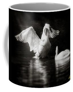 Swan Display Coffee Mug by Rikk Flohr