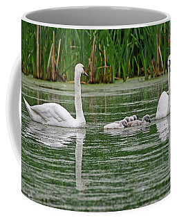 Swan Family Coffee Mug