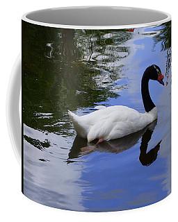 Swan In The Pond Coffee Mug