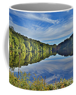 Swan Lake Times Two Coffee Mug