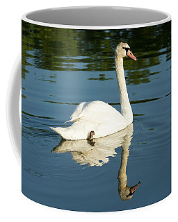 Swan Reflection Coffee Mug