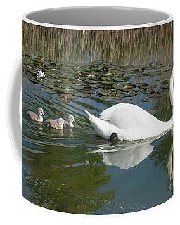 Swan Scenic Coffee Mug
