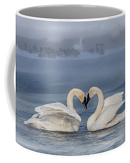 Swan Valentine - Blue Coffee Mug