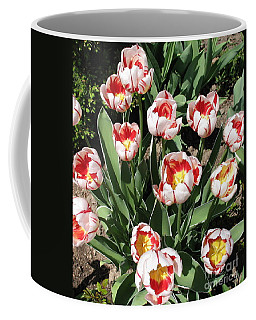 Coffee Mug featuring the photograph Swanhurst Tulips by Jolanta Anna Karolska