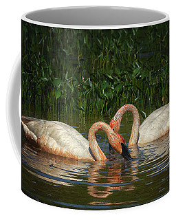Swans In A Pond  Coffee Mug