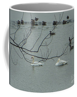 Coffee Mug featuring the photograph Swans With Geese by Rockin Docks Deluxephotos