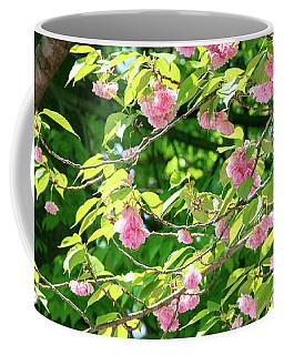 Sweeping Cherry Blossom Branches Coffee Mug