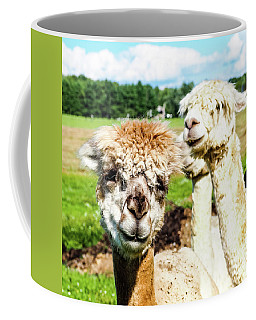The Soft Joy Of Apacas Coffee Mug