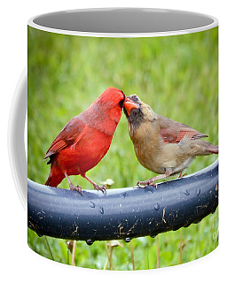 Sweet Cardinal Couple Coffee Mug