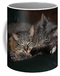 Coffee Mug featuring the photograph Sweet Dreams by Shane Bechler
