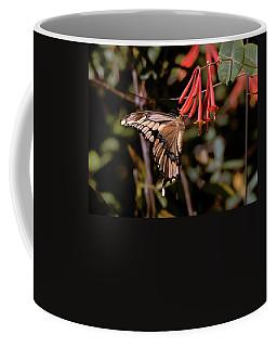 Sweet Feed Coffee Mug