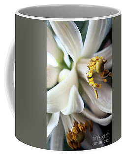 Sweet Fragrance 2 Coffee Mug by Victor K
