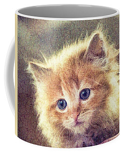 Sweet Ginger Fuzz Coffee Mug