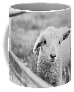 A Lamb Coffee Mug
