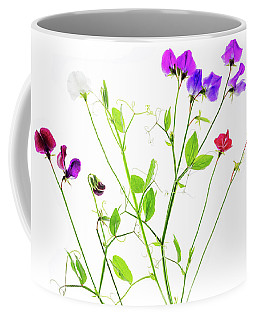 Coffee Mug featuring the photograph Sweet Peas by Rebecca Cozart