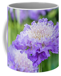 Sweet Petal Coffee Mug