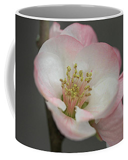 Sweet Refinement Coffee Mug by Connie Handscomb