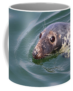 Sweet Seal Coffee Mug