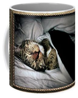 Coffee Mug featuring the photograph Sweet Simba Photo A8117 by Mas Art Studio