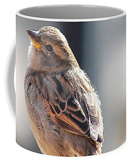 Sweet Sparrow Coffee Mug