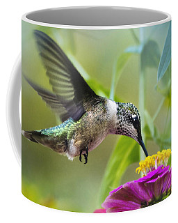 Sweet Success Hummingbird Square Coffee Mug