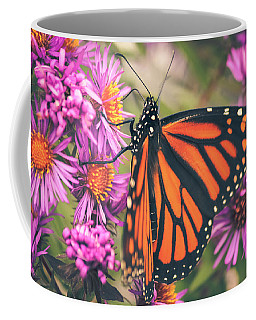 Coffee Mug featuring the photograph Sweet Surrender by Viviana  Nadowski