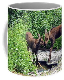 Sweet Twin Moose Calves Coffee Mug