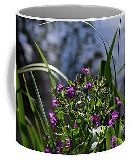 Sweet Violet Coffee Mug