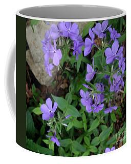 Sweet Williams In The Spring Coffee Mug