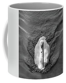 Swim Bnw Coffee Mug