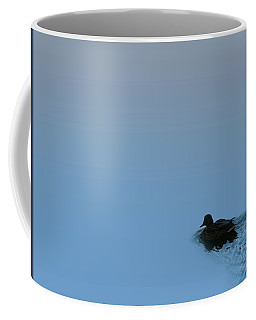 Swimming Duck Coffee Mug