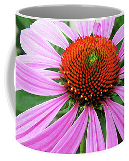 Swirling Purple Cone Flower 3576 H_2 Coffee Mug